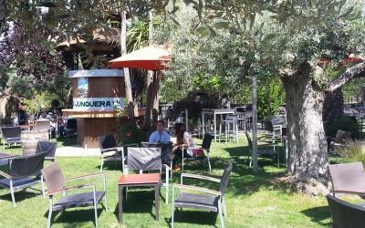 La Junquera: un oasis en Zaragoza