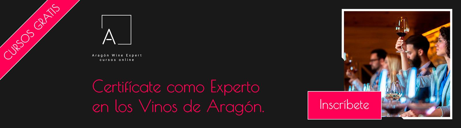 aragon wine expert